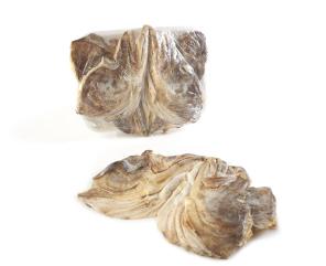 caras-bacalhau